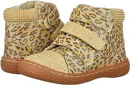 Leopard Shimmer