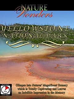 Nature Wonders - Yellowstone National Park - Wyoming - USA