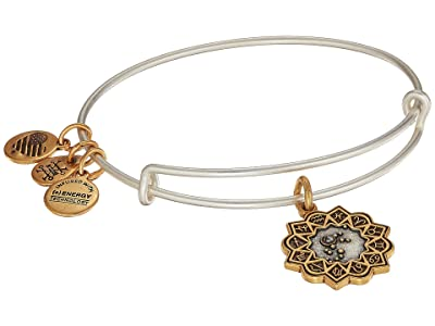 Alex and Ani Two-Tone Zodiac Bangle (Aquarius) Bracelet