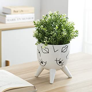 Kimdio Ceramic Flower Pot Vase Irregular Facial Features Design Elegant Decorative Cactus Planter Hand Painting Succulent Pots for Indoor Outdoor - No Plant
