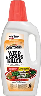 Spectracide Weed & Grass Killer Concentrate2, 32-Ounce
