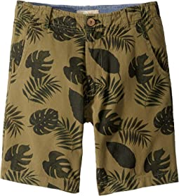 Be Leaf In Me Shorts (Toddler/Little Kids/Big Kids)
