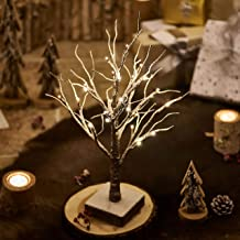 Hairui Tabletop Christmas Jewelry Tree Snow Dusted with Lights Battery Operated Lamp for Cute Room Decor Artificial Flocke...