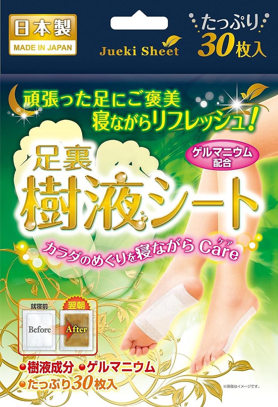鈴木油脂工業 足裏樹液シート 30枚入×4