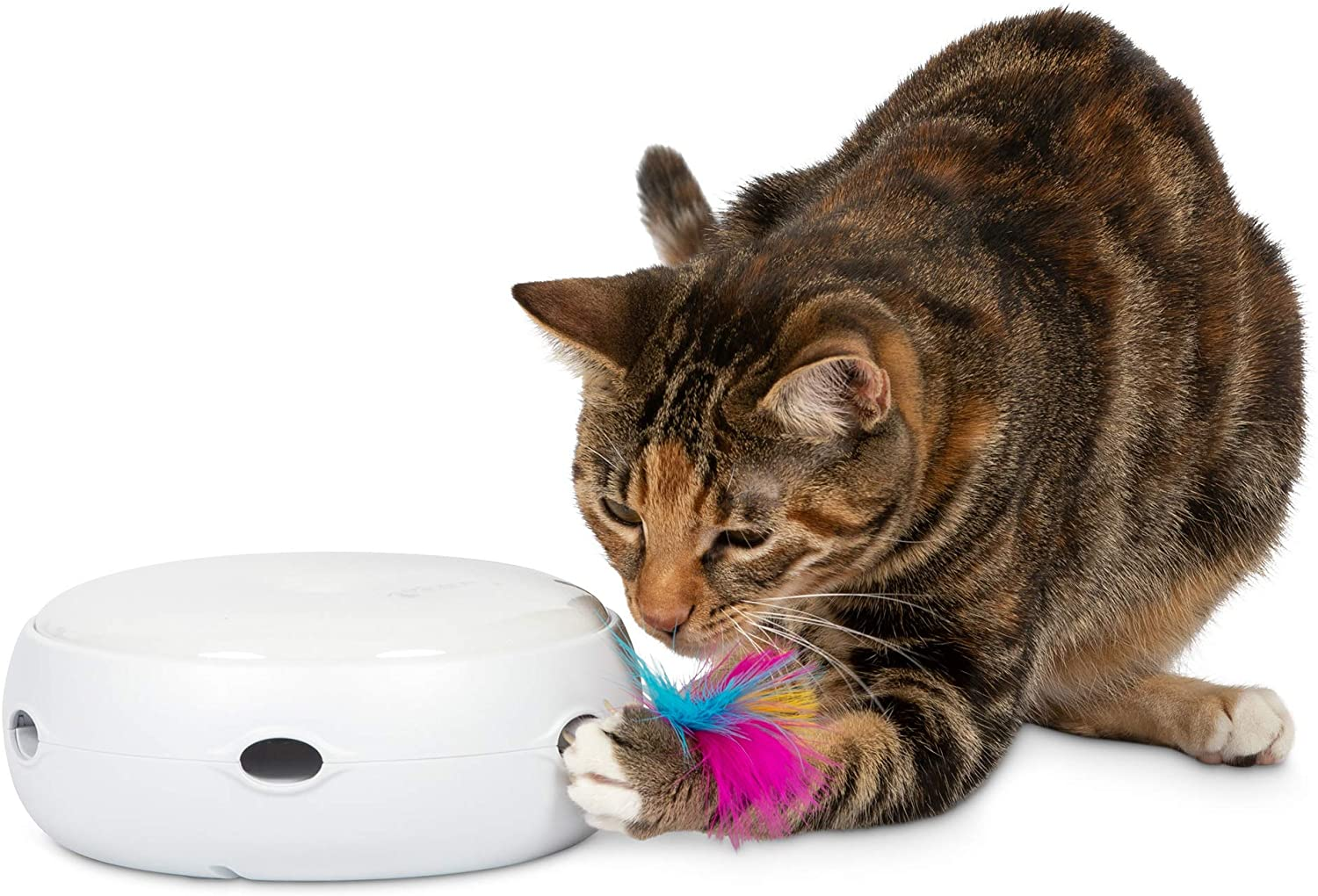 PetFusion New Improved Ambush Sale item Toy Interactive Cat At the price Electronic