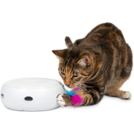 PetFusion [New & Improved Ambush Interactive Electronic Cat Toy w/Rotating Feather. (Quiet, 3 Modes, Nighttime Light, Auto Shut-Off, Batteries Incl). Replacement Feathers Available. 12 Month Warranty