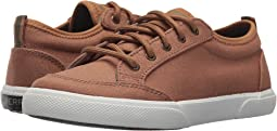 Sperry Kids - Deckfin (Little Kid/Big Kid)