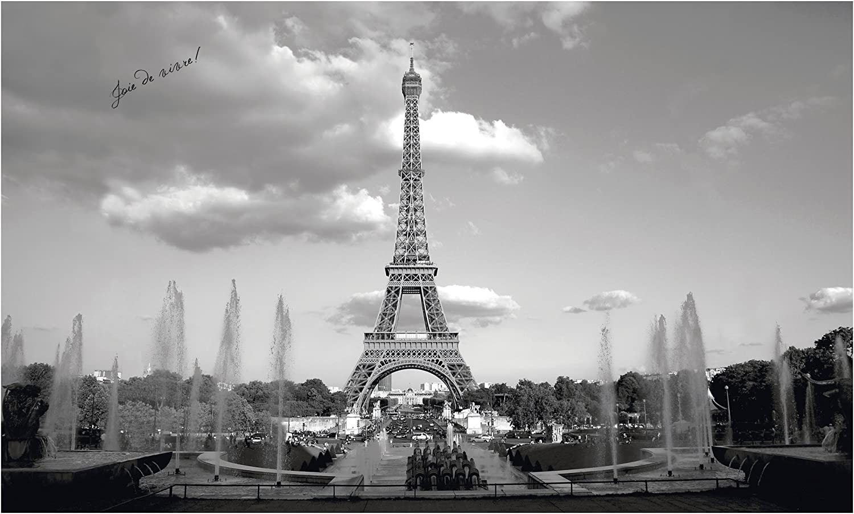 お得クーポン発行中 York Wallcoverings 直営店 MP4950M Eiffel Mural Tower Small