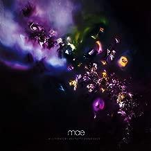 mae multisensory aesthetic experience
