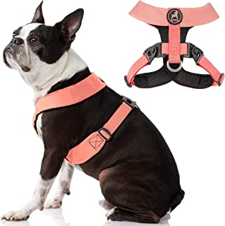 Gooby Dog Harness - Pink, Medium - Comfort X Harness Dual Snap Rotational Buckles with Patented Choke-Free X Frame - Perfe...