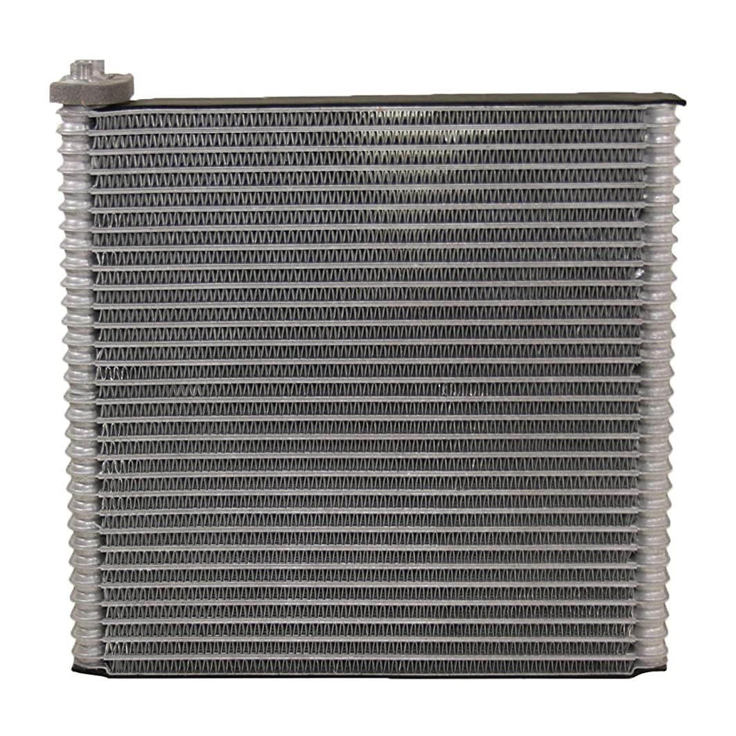 TCW Quality A/C Evaporator 29-939890PF with Perfect Vehicle Fitment