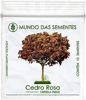 10 Sementes de Cedro Rosa (Outono) - Cedrela fissilis