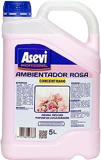 Asevi Profesional 20763 - Ambientador rosa concentrado, 5 l