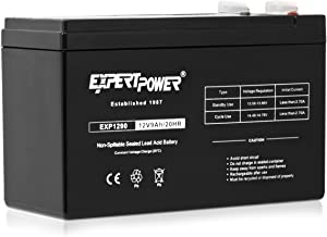 ExpertPower EXP1290 lead_acid_battery