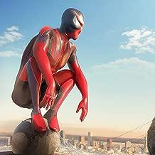Best man spider man Reviews