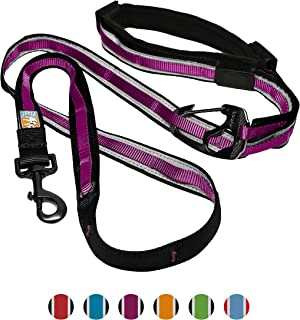 Kurgo 6 in 1 Hands Free Dog Leash | Reflective Running Belt Leash for Dogs | Crossbody & Waist Belt Leash | Carabiner Clip | Padded Handle | For Training, Hiking, or Jogging | Quantum Leash | 6 colors
