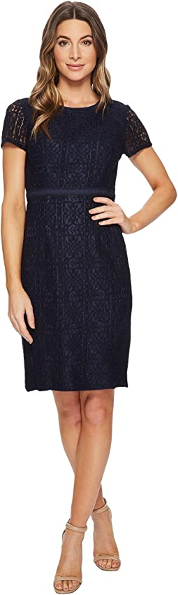 Adrianna Papell - Marni Lace Short Sleeve Sheath