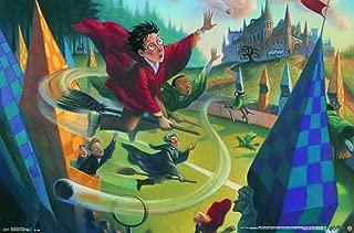 Trends International Harry Potter-Quidditch Premium Wall Poster, 22.375