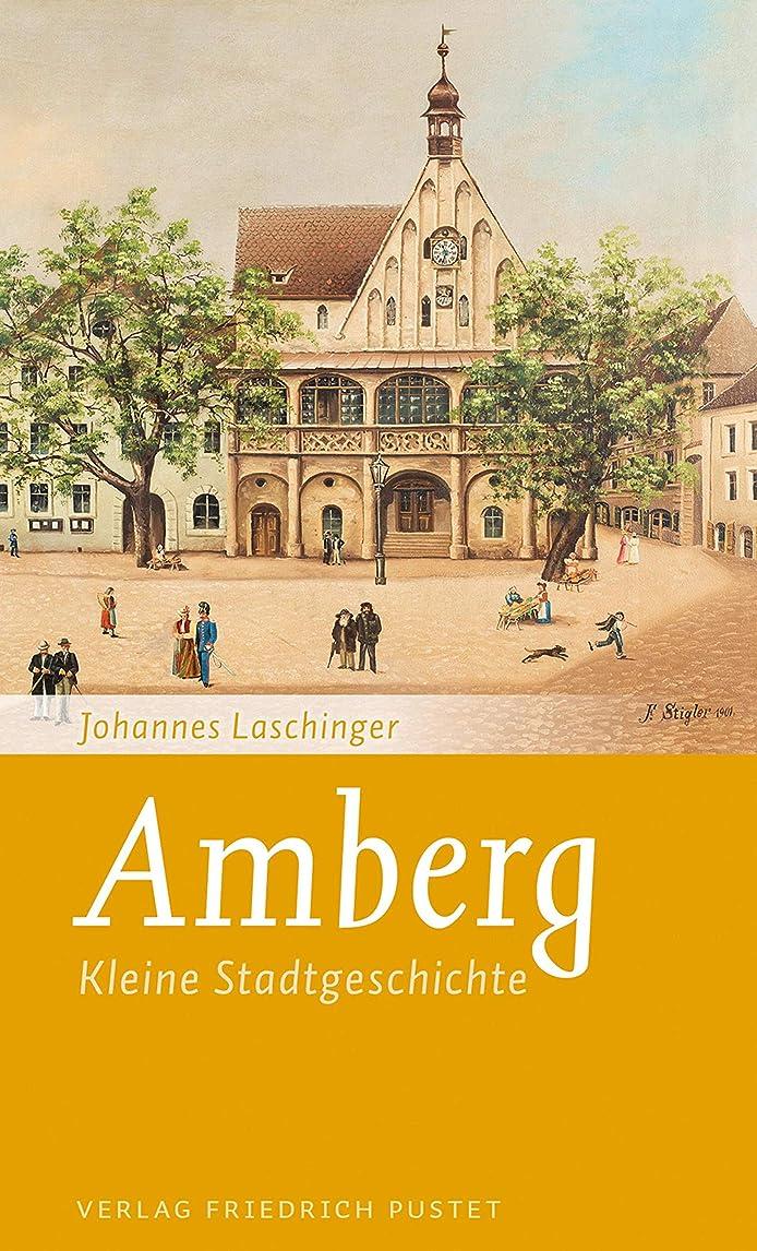 一夜明けに死Amberg: Kleine Stadtgeschichte (Kleine Stadtgeschichten) (German Edition)