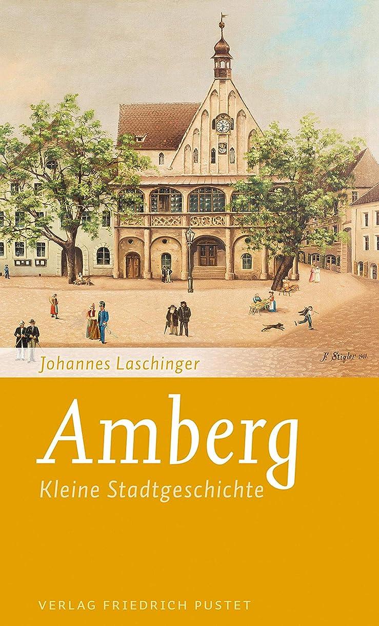 麻痺させるペイントコンバーチブルAmberg: Kleine Stadtgeschichte (Kleine Stadtgeschichten) (German Edition)