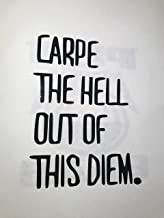MR.Ci Carpe The Hell Out of This Diem Vinyl Decal | Black 6in Car, Tablet, Laptop, Graduation Gift