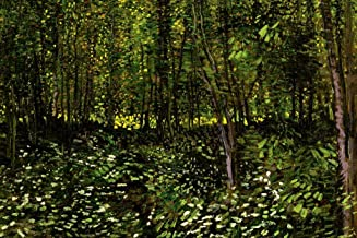 Vincent Van Gogh Trees and Undergrowth Forest Cool Wall Decor Art Print Poster 24x36