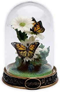 Cosmos Monarch Butterfly in Glass Dome