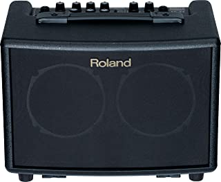 Roland Battery-Powered Acoustic Chorus Amp (AC33)