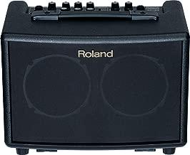 Roland Battery-Powered Acoustic Chorus Amp (AC33)