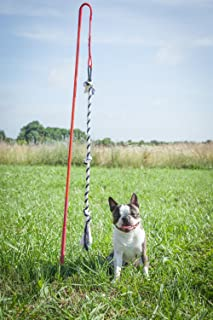 Tether Tug Interactive Dog Rope Toy- Great for Every Breed