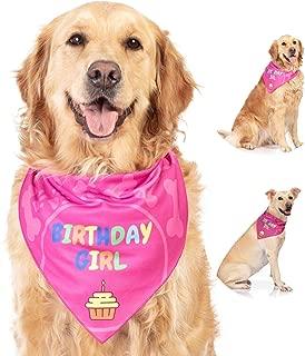 happy birthday bandana for dogs