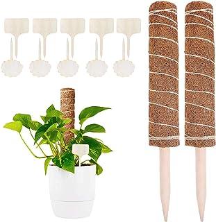 Pflanzst/äbe Holz Kokosstab St/ützpfahl Moosstab Rankhilfen f/ür Kletterpflanzen aus Nat/ürlicher Kokosfaser mit Pflanzenschilder Pflanzenbinder 2Pcs Pflanzstab Kokos Rankstab Rankhilfe Blumenstab