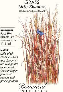 Grass Little Bluestem Seeds Botanic Gardens Series 110 Seeds