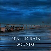 Best gentle rain sounds mp3 Reviews