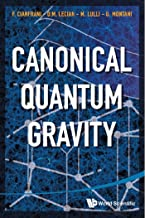 Canonical Quantum Gravity:Fundamentals and Recent Developments (English Edition)