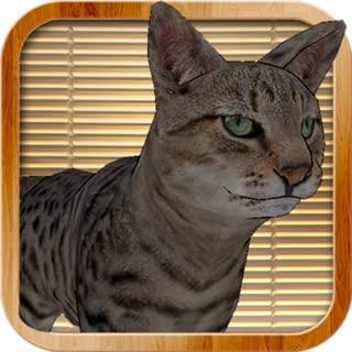 Zen Cat Destroyer Simulator