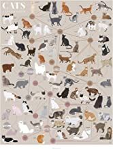 Pop Chart: Poster Prints (16x20) - Cats Infographic - Printed on Archival Stock - Features Fun Facts About Your Favorite Things