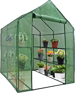 Mini Walk-in Greenhouse Indoor Outdoor -2 Tier 8 Shelves- Portable Plant Gardening Greenhouse (57L x 57W x 77H Inches), Gr...