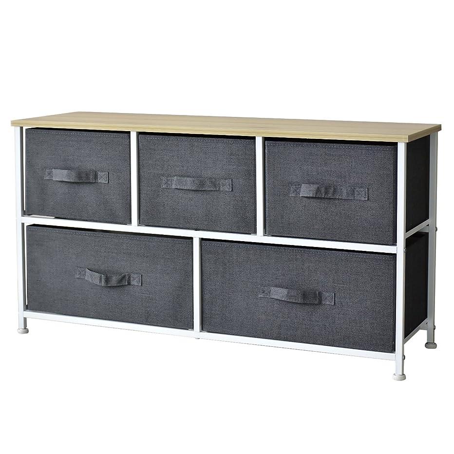 スポークスマン進行中パワーDORIS 収納ボックス 布 引き出し 5杯 2段 幅100×高さ54cm 布製 グレー リリア