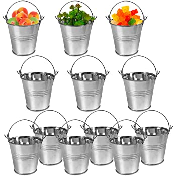 12 Pack Mini Metal Buckets Small Metal Pail Tinplate Tin Pails Containers with Handles for Party Favors and Garden Decorations 3 Inch