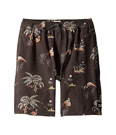 Rip Curl Kids Del Boca Volley Boardshorts (Big Kids) (Black) Boy