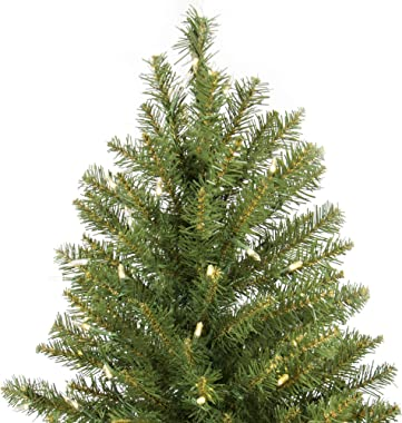 Best Choice Products 9ft Pre-Lit Hinged Douglas Full Fir Artificial Christmas Tree Holiday Decoration w/ 3,594 Branch Tips, 1,000 Warm White Lights, Easy Assembly, Foldable Metal Stand - Green