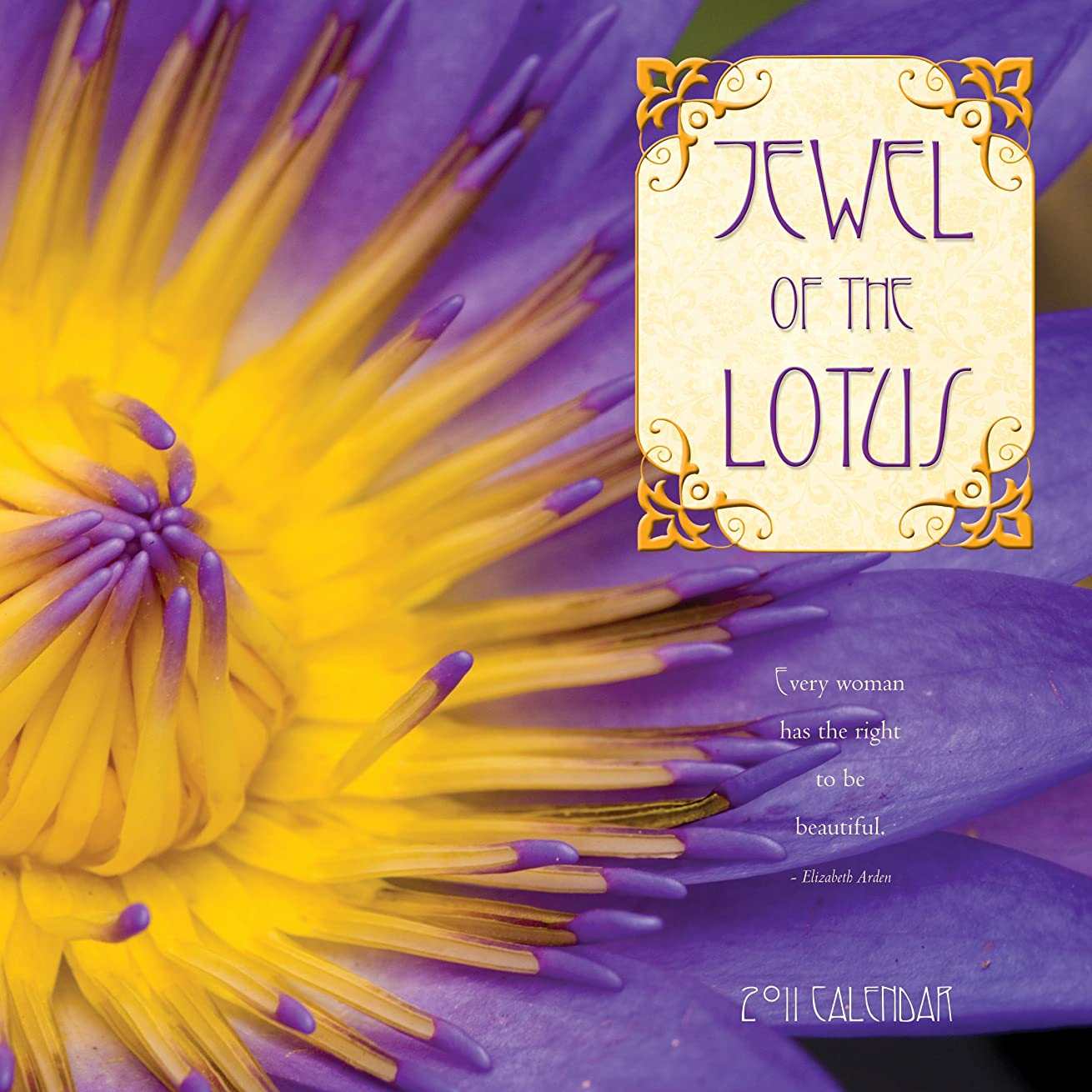 ビルマ暴力的な申請中Jewel of the Lotus 2011 Calendar