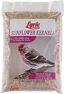 Lyric 2647445 Sunflower Kernels - 5 lb.