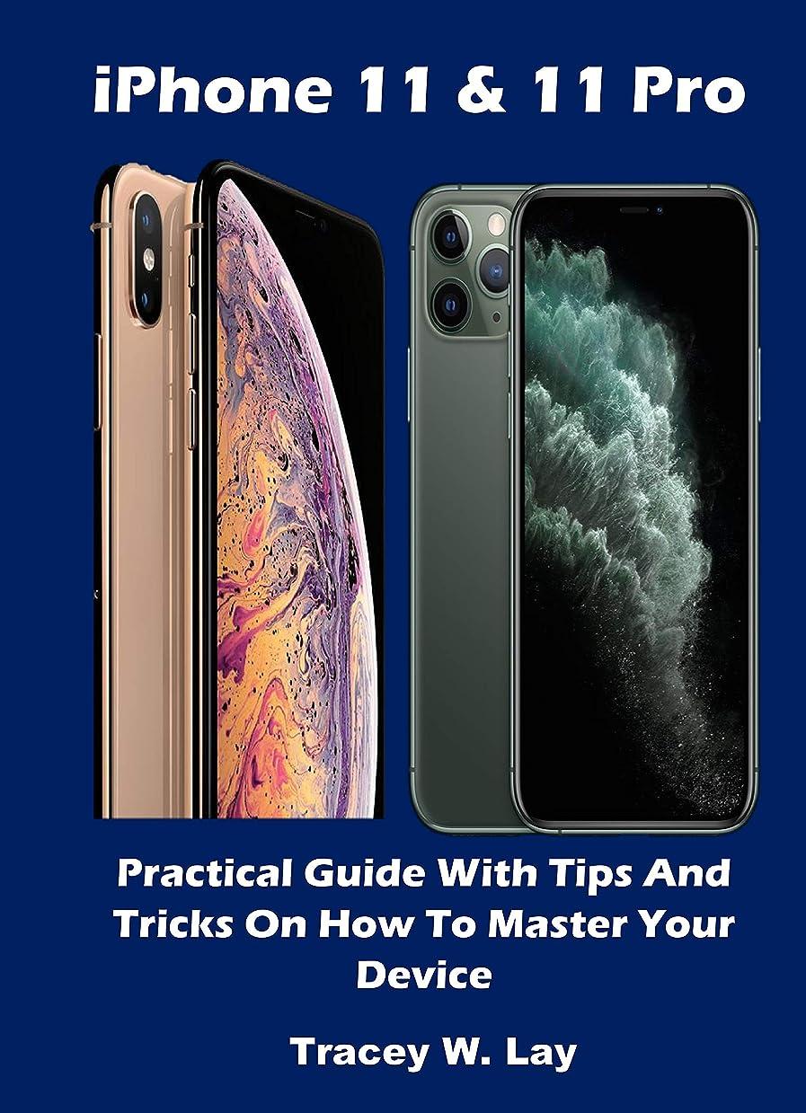 虹画像極端なiPhone 11 & 11 Pro: Practical Guide With Tips And Tricks On How To Master Your Device (English Edition)