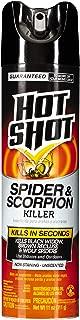 Hot Shot Spider & Scorpion Killer, Aerosol, 11-Ounce