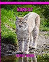 Bobcat: Beautiful Pictures & Interesting Facts Children Book About Bobcat