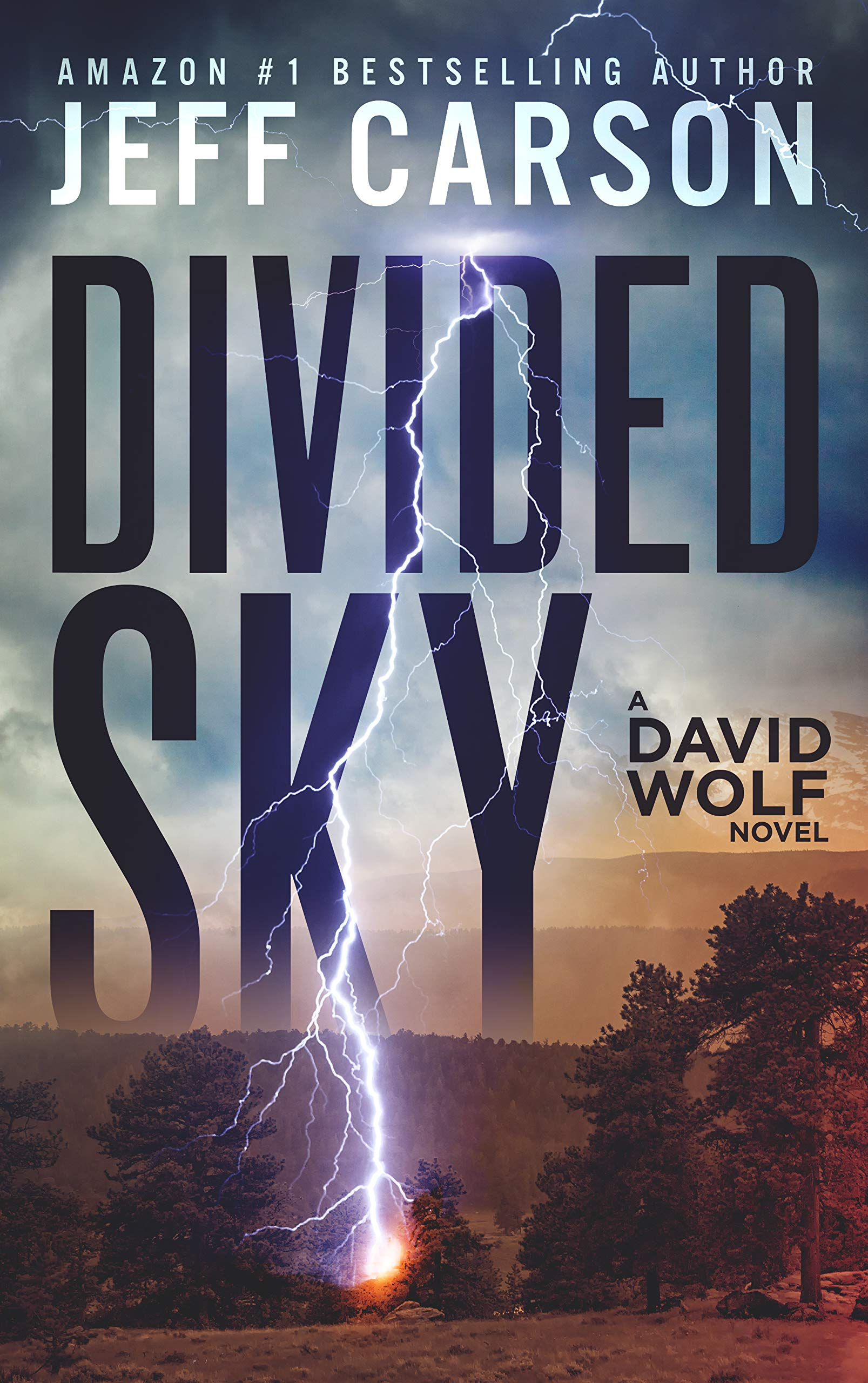 Divided Sky (David Wolf Book 13)