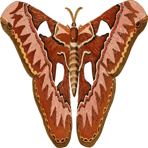 The Moth Podcast Listener