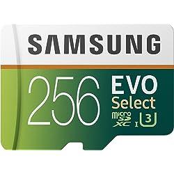 Samsung EVO Select 256 GB microSD 100 MB/s